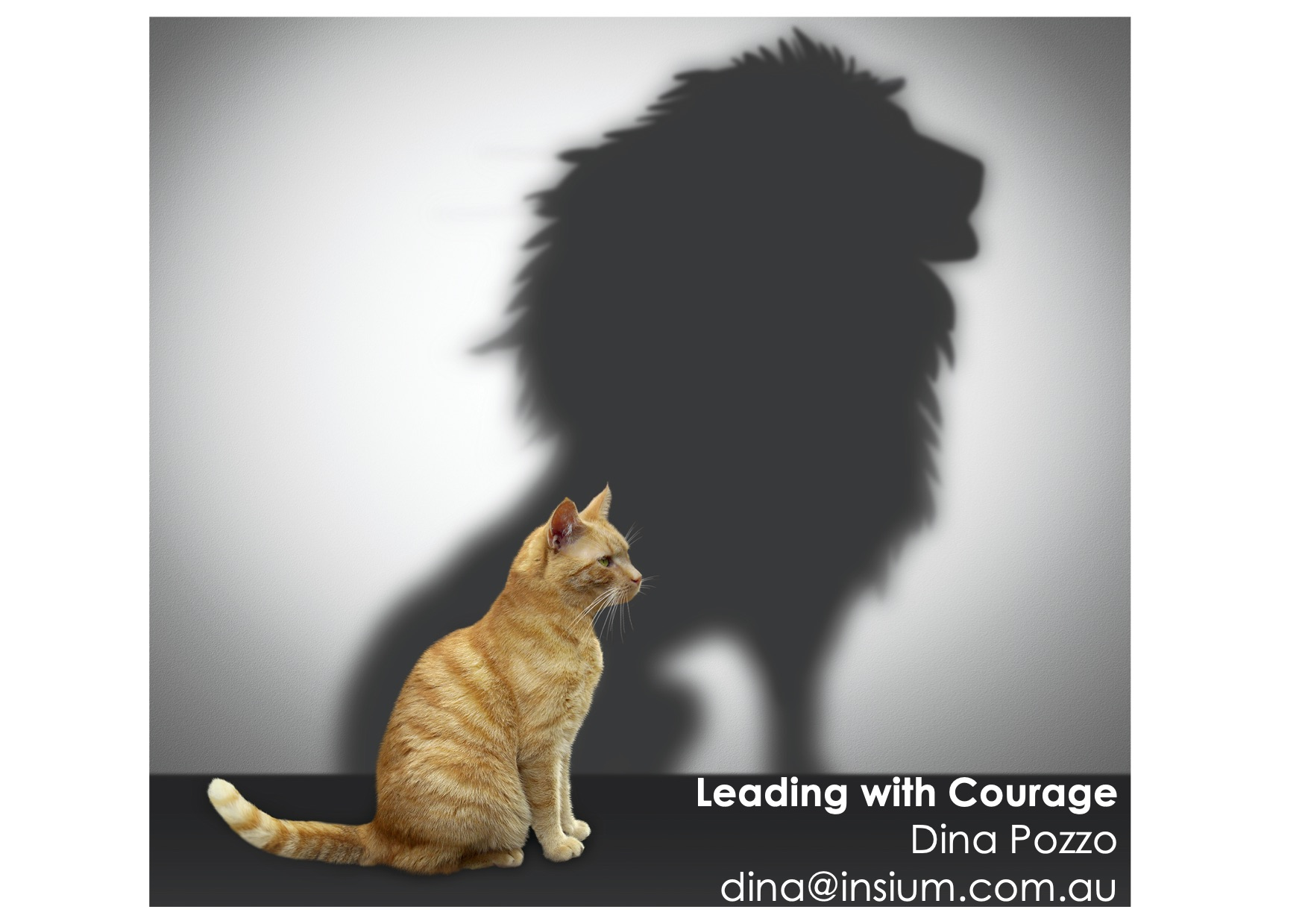 Leading with courage_presentation_IPPA